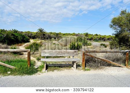 Alfonso Xiii Park In Guardamar Del Segura, Alicante. Spain. Europe. September 23, 2019