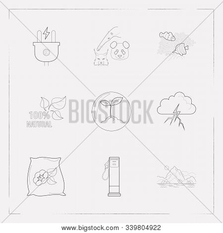 Set Of Ecological Icons Line Style Symbols With Biosphere, Rare Animals, Thunder And Other Icons For