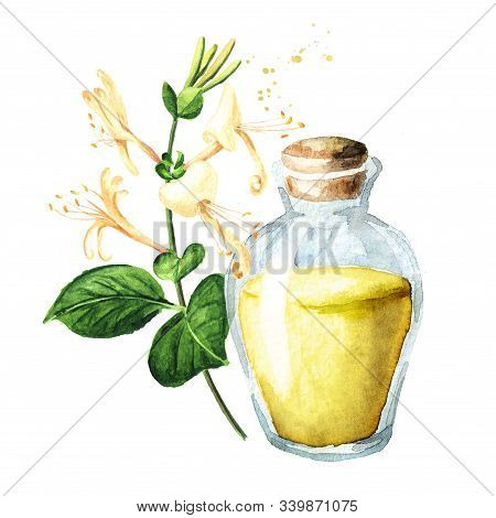 Honeysuckle Flowers And Glass With Essential Oil. Watercolor Hand Drawn Illustration, Isolated On Wh
