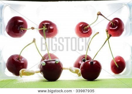 scene emphasizing ecological farming cherries