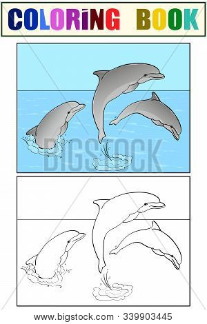 Rest On The Sea, Three Dolphins Play In The Water. Book Coloring And Color For Children