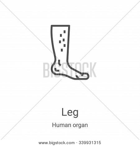 leg icon isolated on white background from human organ collection. leg icon trendy and modern leg sy