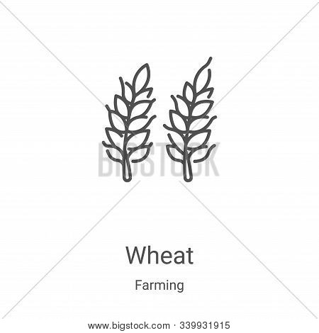 wheat icon isolated on white background from farming collection. wheat icon trendy and modern wheat