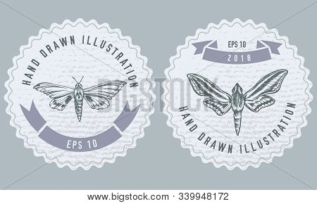 Monochrome Labels Design With Illustration Of Ambulyx Pryeri, Theretra Oldenlandiae Stock Illustrati