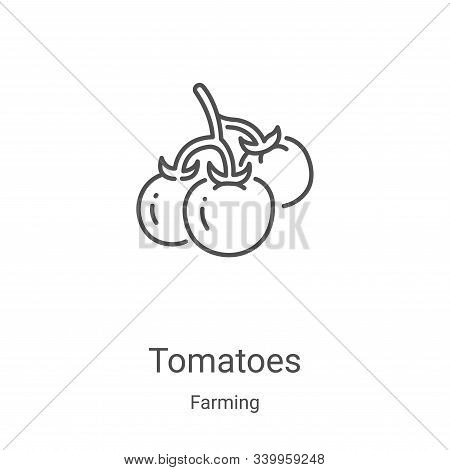 tomatoes icon isolated on white background from farming collection. tomatoes icon trendy and modern