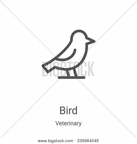 bird icon isolated on white background from veterinary collection. bird icon trendy and modern bird