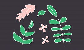 Set Of Hand Drawn Plants. Sketchy Branch, Flowers And Leaves Clipart Elements. Contour Plants. Simpl