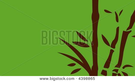 Chinese bamboo trees vector illustration art background poster