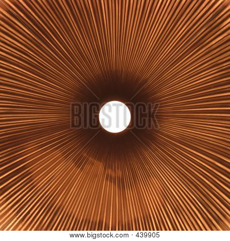 Copper Fluted Tubing