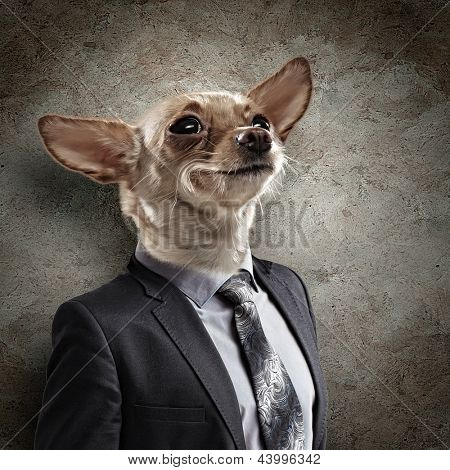 Funny portrait of a dog in a suit on an abstract background. Collage. poster