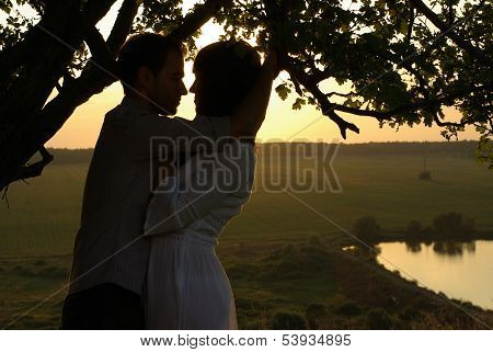 Couple under tree at summer evening