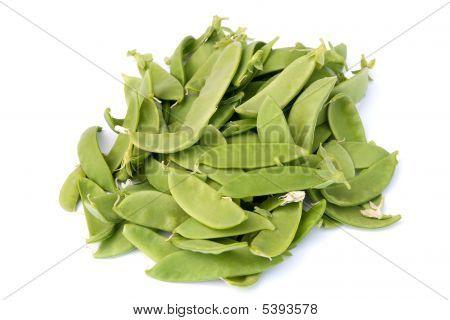 Oregon Giant Sugar-snap Peas