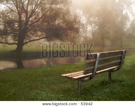 Park Bench On Foggy Morning