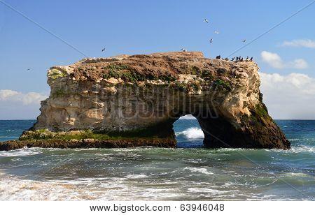 The rocky bridge in the Natural Bridges National Park in Santa Cruz