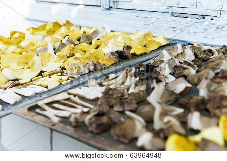 Dried Slices Of Mushroom On The Board.