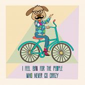 Hipster poster with nerd dog riding bike vector illustration poster