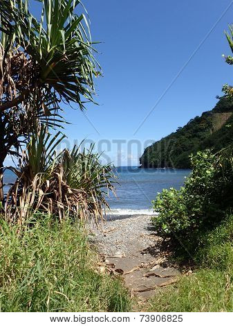 Path Opens To Black Sand Beach At Honomanu Park