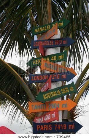 Hawaii Tropical Sign