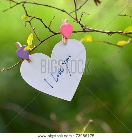 Heart Shaped I Love You Card