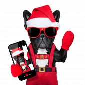 Santa claus christmas dog wearing a hat taking a selfie isolated on white background poster