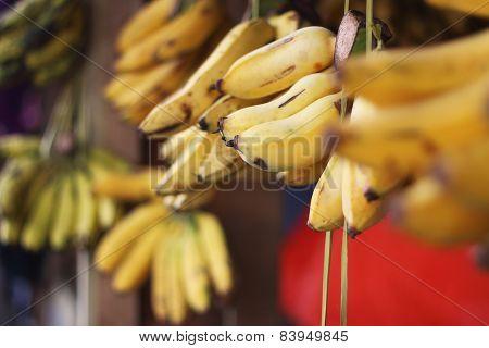 Bananas In The Market