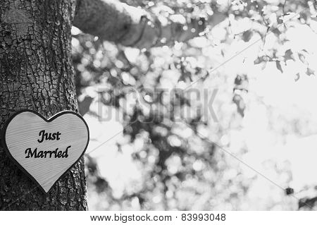 Just Married Tree