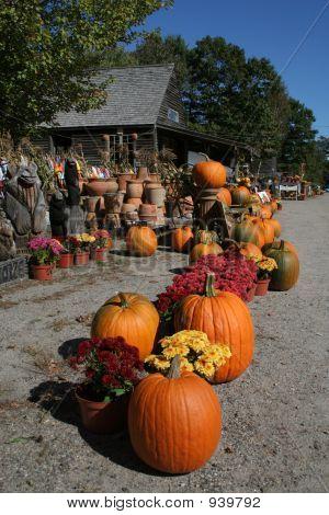 Pumpkin Roadstand