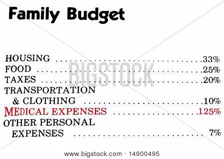 Family Budget Concept