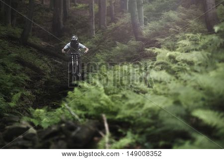 Mountainbiker rides on path in dark forest