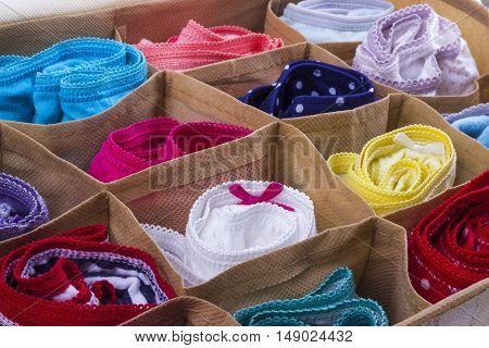 Fragment of Organizer for storage underwear panties
