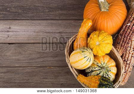 Assortment of colorful gourds and squash on a wood surface with copy space