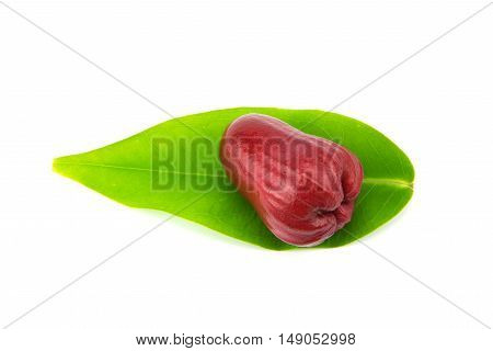 Rose apples or chomphu isolated on white background