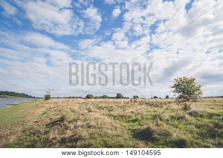 Plains With Tall Grass And Blue Sky