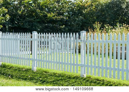 White Picket Fence In A Garden