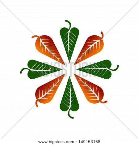 Autumnal Vector illustration or design element with leafs.