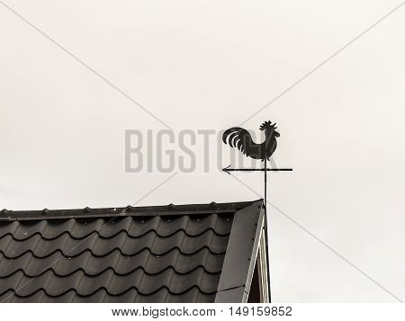 A Rooster Weather Vane on Roof-ridge with a gray background.