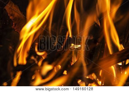 Fire flames on a black background. Blaze fire flame texture background. Close up of fire flames isolated on black background. Burn. Abstract fire flames background. Texture