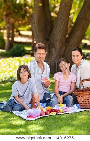 Portrait of a joyful family picnicking in the park poster