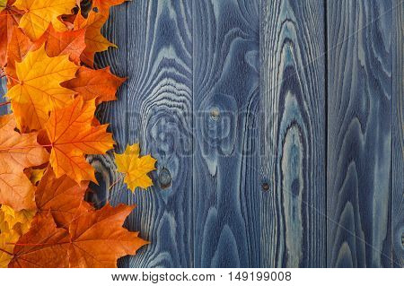 Autumn Leaves Over Old Wooden Background. With Copy Space