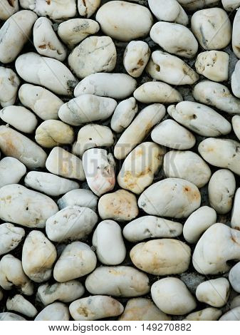 River Pebble Background
