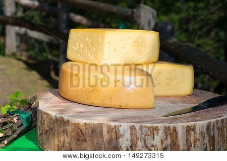 Mountain genuine cheeses of Italian Alps Bergamo