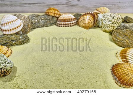 Shells and stones on the yelllow sand copy space