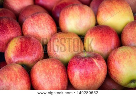 Ripe selected gala apples laid out in rows at a grocery shop for sale. Colorful background of gala apples. Horizontal. Daylight.