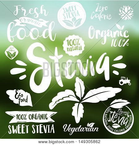 Stevia and Organic food label Set. Farm Fresh label and Vector Logo element. Organic,bio,ecology natural design template. Easy editable for Your design. Retro natural look logotype icon.