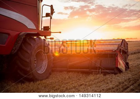 Combine harvesting the wheat on a sunset.