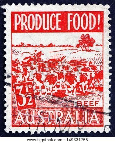 AUSTRALIA - CIRCA 1953: a stamp printed in Australia shows Cattle Grazing Food Production circa 1953