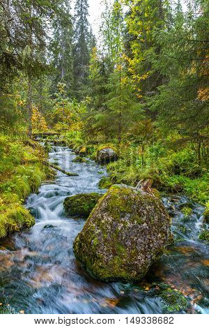 Big rock and stream in autumnal forest