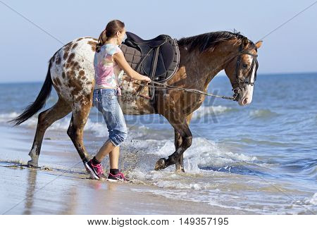 horsewoman and her horse on the beach
