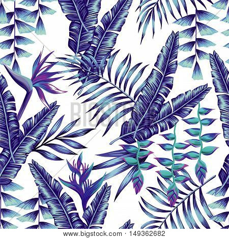 Tropical flower seamless pattern print wallpaper summer plant a banana palm leaves in trendy blue style. Hawaii jungle vector background