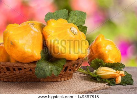 yellow pattypan squash with leaf in a wicker basket on a wooden table with a blurred background.
